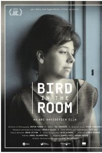 IFF - Quiet Gold and Bird in the Room