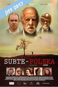 Subte: Polska